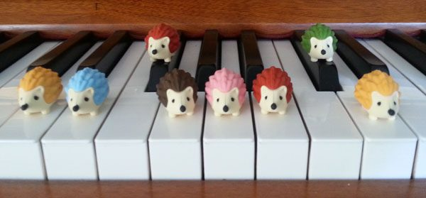 Hedgehogs D major scale